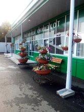 Гостиница Книикот