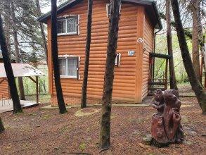 Отель Nella Foresta