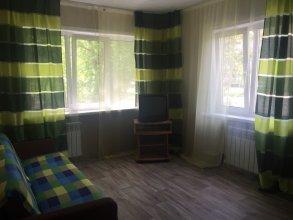 Апартаменты Красноярский рабочий 113