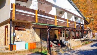Отель Осьминог
