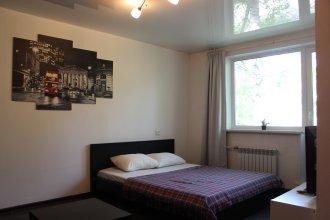 Dve Podushki Na Kropotkina 96 Apartments