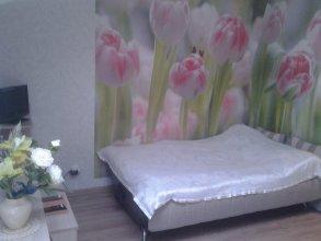 Апартаменты на Калужской