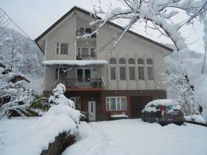 Гостевой дом Родник