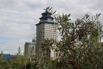 Отель Пекин Палас Soluxe Astana