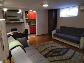 Apartment Dedinje