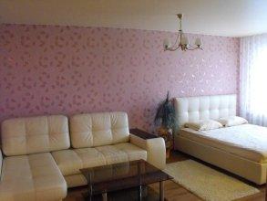 Apartment on Goncharova