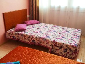 Svetlana Apartment