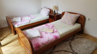 Apartment Mrsulja