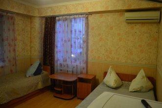 Hotel Davzar