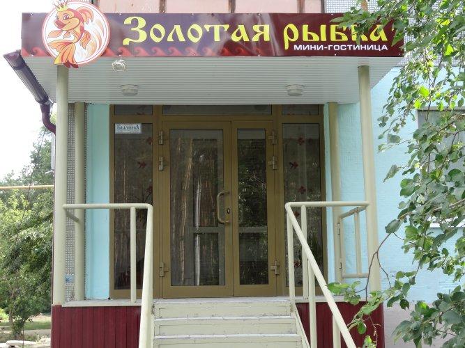 мини отель золотая рыбка: